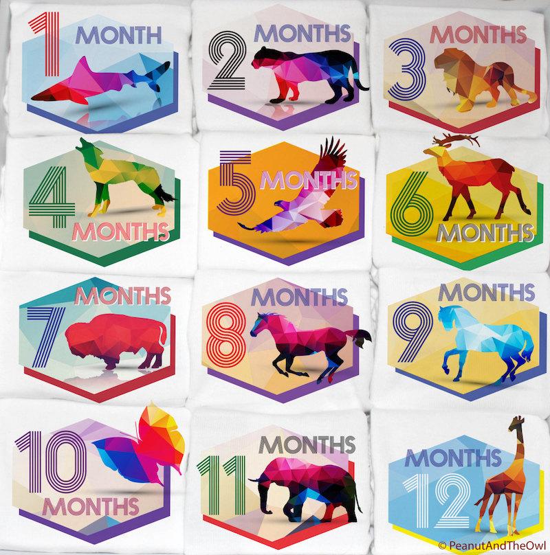 Kaleidoscope Animal Monthly Baby Onesie Set