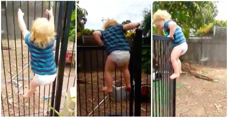 Toddler opens locked gate