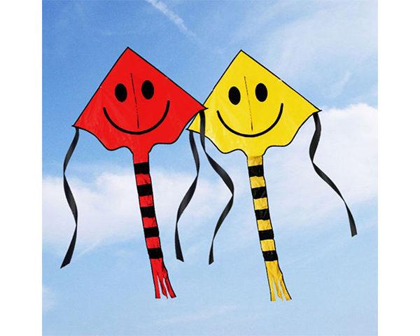 Smiley Kite