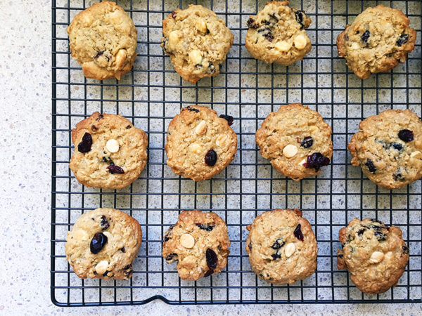 white chocolate cranberry oat biscuit cookies