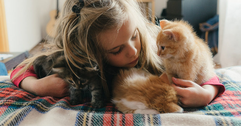 Girl with two ginger kittens