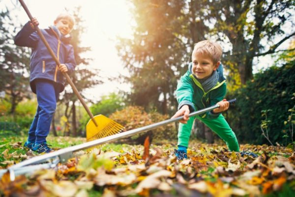 little boys raking leaves