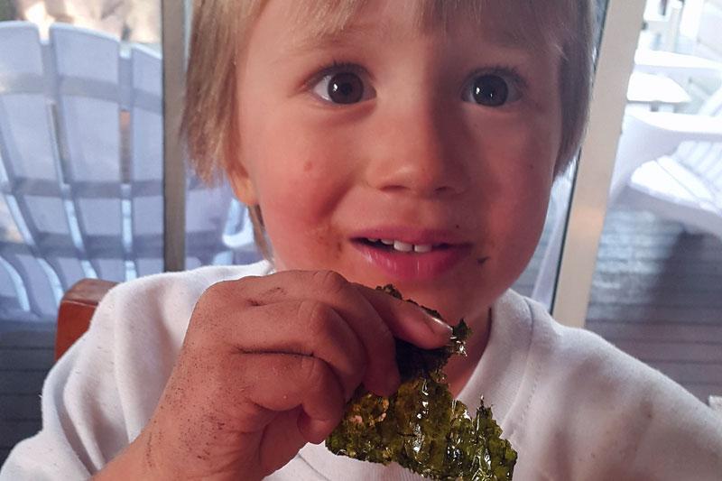 Leon eating seaweed
