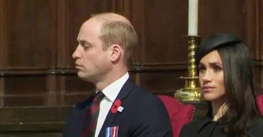 Prince William, father of newborn, falls asleep at work and we understand