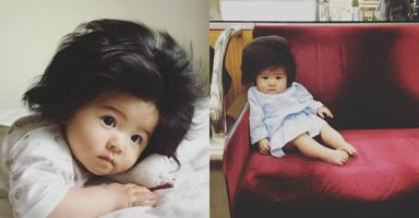 Totally wild! This baby's hair is so awesome it has its own instagram account