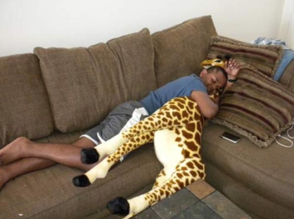 Giant giraffe