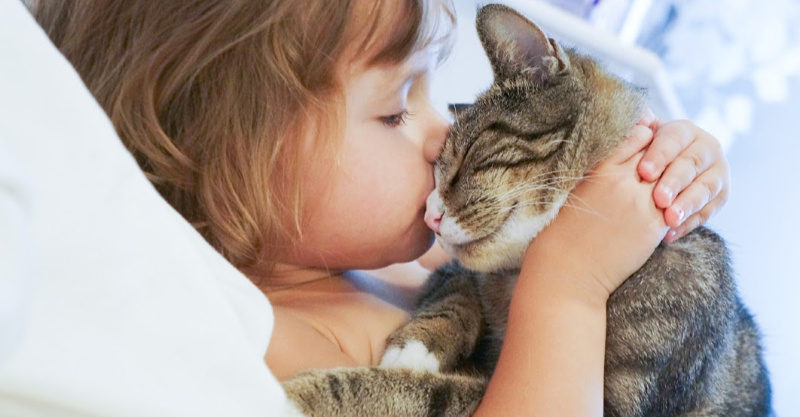 Girl kissing a cat